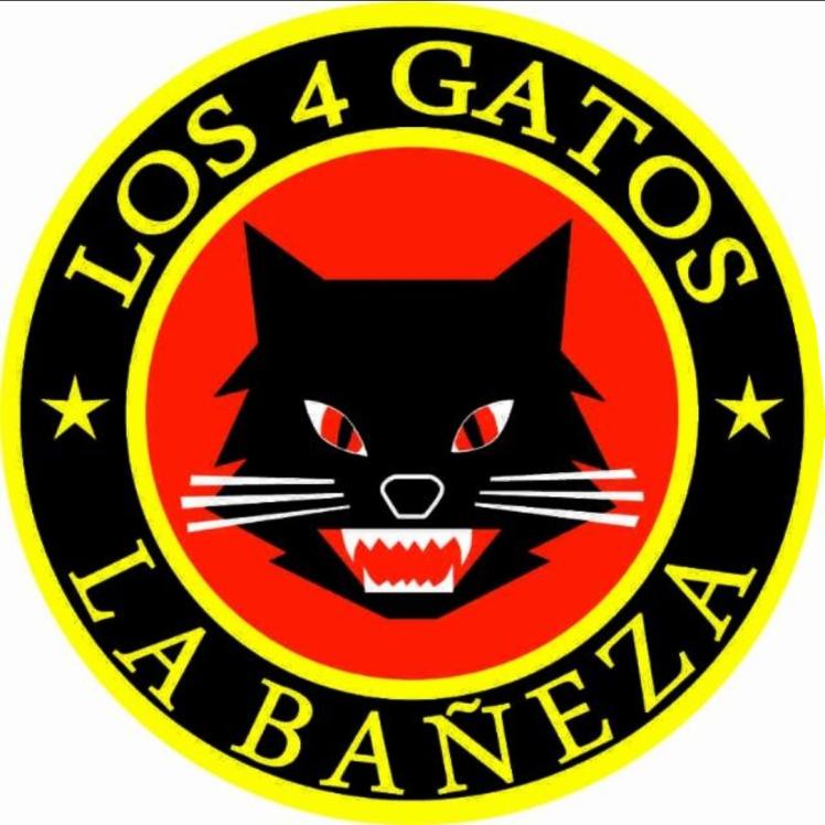 gato2019